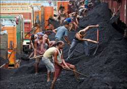 cvc tells cbi to probe coal block allocations since 1993