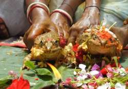 indian villagers hold frog wedding to bring rain