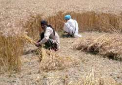 haryana govt releases cheques of rs 28 crore for farmers