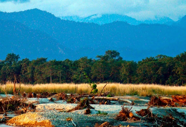 Manas National Park, Assam This place has Elephant reserves,Tiger reserves and various other biodiversity reserves. Manas National Park is one of the UNESCO Natural World Heritage Site in Assam. Being lesser-crowded, this place is suitable for tourism this season.