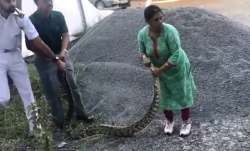 In nail-biting video, 60-year-old woman captures 20kg