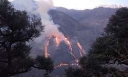 Forest fire in Kinnaur, Himachal Pradesh