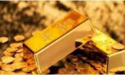 sonbhadra,sonbhadra goldmine,sonbhadra goldmine latest,sonbhadra goldmine latest news,sinbhadra gold