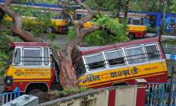 A bus ransacked by a fallen tree in the wake of Cyclone