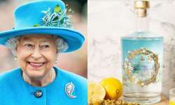 Buckingham Palace launches 'unique gin' with ingredients from Queen Elizabeth's home