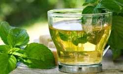 Green tea, help, tackle, COVID-19, Indian origin researcher, coronavirus pandemic, covid updates, co